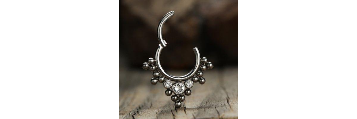 Eure Favoriten: Clicker Segmentringe - Neue Clicker Piercing mit Schanier | PIERCING-EXPRESS