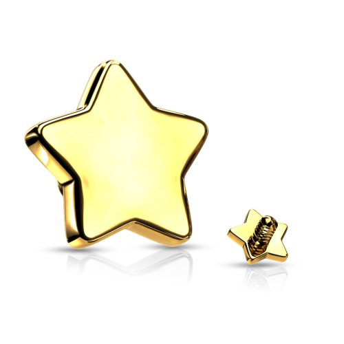 dermal anchor aufsatz goldene sterne