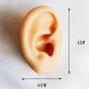 Silikon Ohr Schmuck Display Natur oder Schwarz