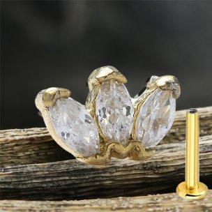 Gold Rosegold glitzer Helix Conch Stecker Labret 3er...